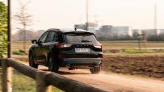 Ford Kuga smartworking: un passaggio sui sentieri extraurbani