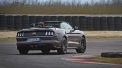 Ford Mustang Cabrio 5.0 V8  - Immagine: 3