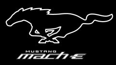 Ford Mustang Mach-E, genetica Mustang