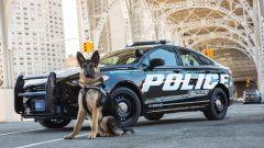 "Ford Police Responder Hybrid Sedan: l'ibrida dei ""cop"" USA - Immagine: 7"
