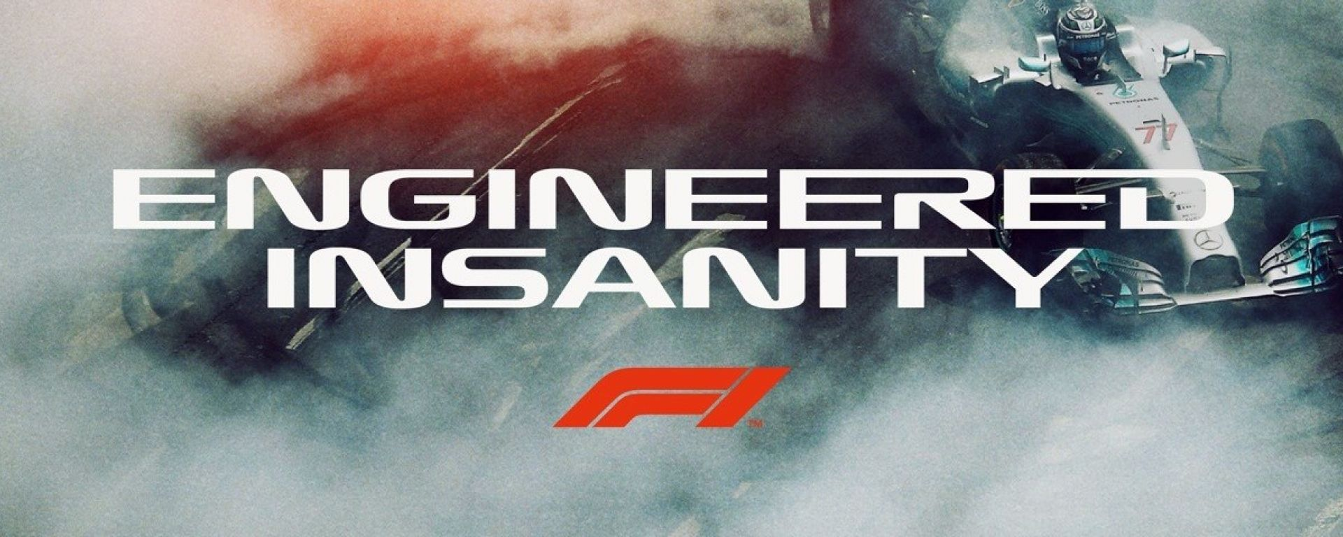 Formula 1 Engineered Insanity