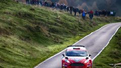 Giandomenico Basso e Lorenzo Granai – Ford Fiesta R5 Ldi - Immagine: 9