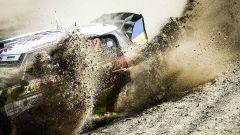 Gorban - Rally Portogallo, WRC 2017