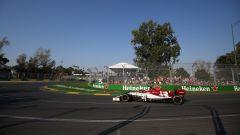 GP Australia 2019 - Antonio Giovinazzi (Alfa Romeo)