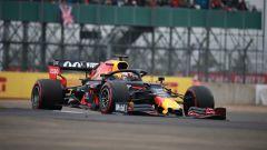 GP Gran Bretagna 2019, Silverstone, Max Verstappen (Red Bull)