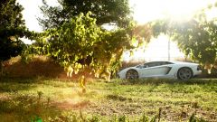 Grande Giro Lamborghini: tutte le foto - Immagine: 53