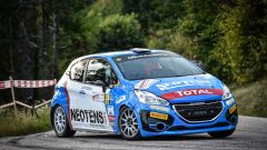 Griso - Peugeot Competition 208 Rally Cup Top