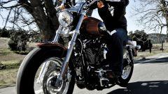Harley Davidson 1200 Custom - Immagine: 18
