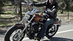 Harley Davidson 1200 Custom - Immagine: 17