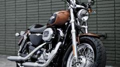 Harley Davidson 1200 Custom - Immagine: 9