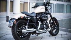 Harley-Davidson 883 Iron - Immagine: 6