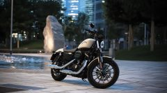 Harley-Davidson 883 Iron - Immagine: 11