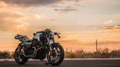 Harley-Davidson King of the Kings: vince Apex Predator - Immagine: 3