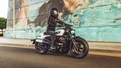 Nuovo Sportster Harley-Davidson: foto, caratteristiche e prezzo - Immagine: 2