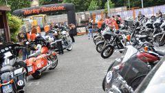 Harley-Davidson: il racconto della Chrono Alps 500 - Immagine: 3