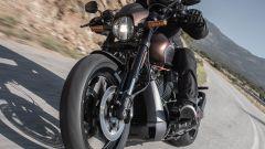 Harley-Davidson: prova la gamma 2019 il 23 e 24 marzo - Immagine: 3