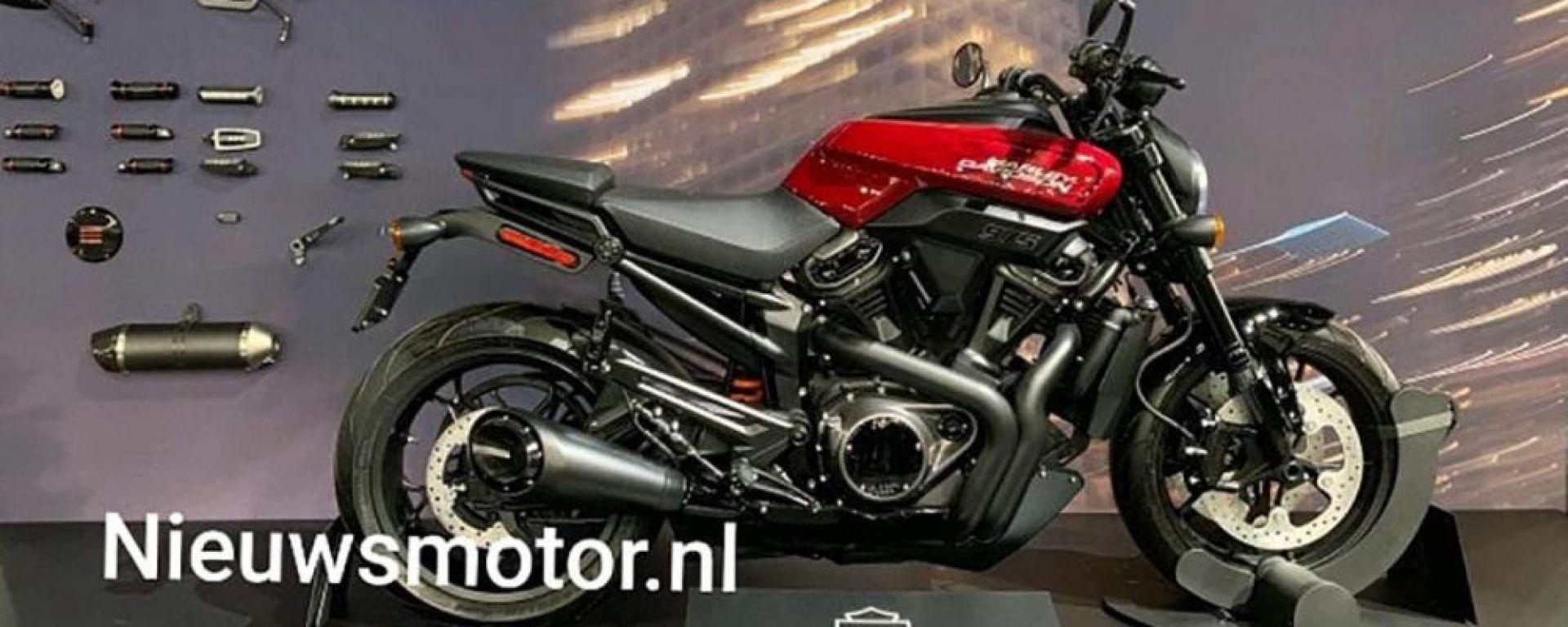 Streetfighter e Pan America 2020: le prime foto delle nuove Harley-Davidson