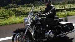 Harley Davidson MY 2011 - Immagine: 48
