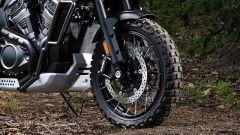 Harley-Davidson Pan America 1.250: dettaglio dell'avantreno