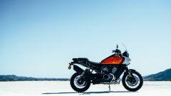 Harley-Davidson Pan America 2021: la prima maxienduro della Casa di Milwaukee