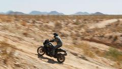 Harley-Davidson Pan America a suo agio sugli sterrati