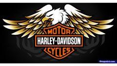 Harley-Davidson registra il nome Bronx, sarà un nuovo modello? - Immagine: 2