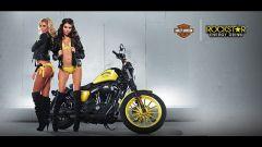 Harley-Davidson Rockstar Energy - Immagine: 3