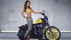 Harley-Davidson Rockstar Energy - Immagine: 23