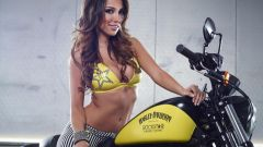 Harley-Davidson Rockstar Energy - Immagine: 2