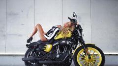 Harley-Davidson Rockstar Energy - Immagine: 21
