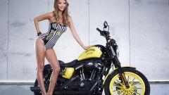 Harley-Davidson Rockstar Energy - Immagine: 20