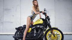 Harley-Davidson Rockstar Energy - Immagine: 26