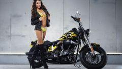 Harley-Davidson Rockstar Energy - Immagine: 28