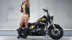 Harley-Davidson Rockstar Energy - Immagine: 19