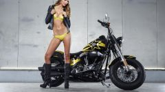 Harley-Davidson Rockstar Energy - Immagine: 18