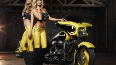 Harley-Davidson Rockstar Energy - Immagine: 9