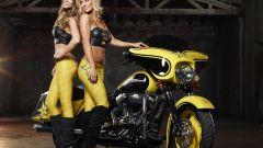 Harley-Davidson Rockstar Energy - Immagine: 8