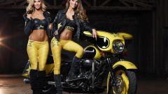 Harley-Davidson Rockstar Energy - Immagine: 7