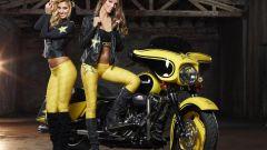Harley-Davidson Rockstar Energy - Immagine: 11