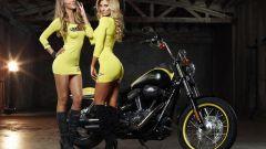 Harley-Davidson Rockstar Energy - Immagine: 15