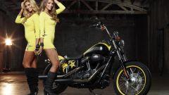 Harley-Davidson Rockstar Energy - Immagine: 13