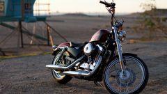 Harley-Davidson Seventy-Two - Immagine: 19