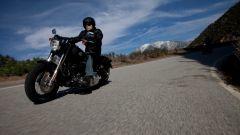 Harley-Davidson Softail Slim - Immagine: 4