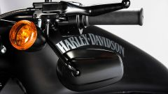 Harley-Davidson Sportster Iron 883 Special Edition S - Immagine: 15
