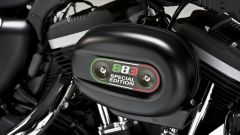 Harley – Davidson Sportster Iron 883 Special Edition - Immagine: 46