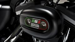 Harley – Davidson Sportster Iron 883 Special Edition - Immagine: 1