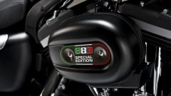 Harley – Davidson Sportster Iron 883 Special Edition - Immagine: 45