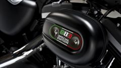 Harley – Davidson Sportster Iron 883 Special Edition - Immagine: 44