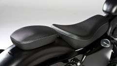 Harley – Davidson Sportster Iron 883 Special Edition - Immagine: 25