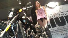 Harley Davidson Street 750 - Immagine: 11